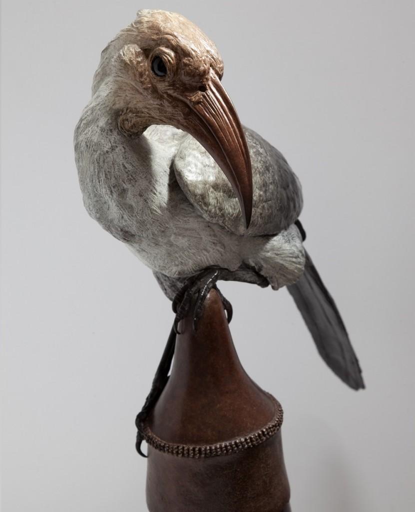Hornbill_detail